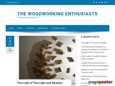 thewoodworkingenthusiasts.com